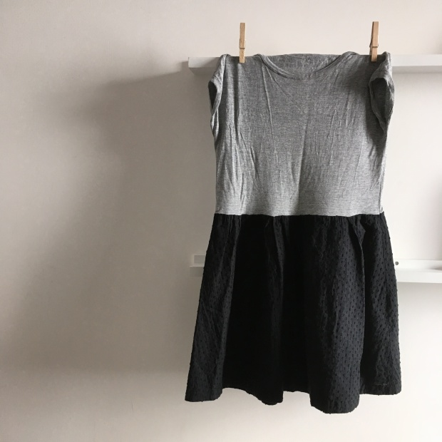 robe grise et noire le mouton sauvage